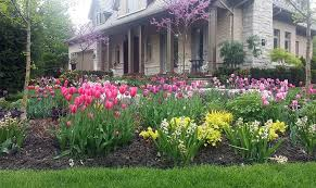 stunning landscape curb appeal