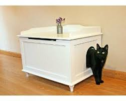 Cool Hidden Litter Box
