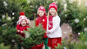 19 Most Creative Kids Christmas Trees  Pretty My PartyChristmas Tree Kids