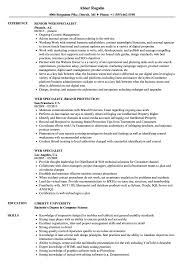 Web Specialist Resume Samples Velvet Jobs