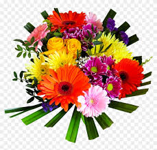 bouquet flowers png transpa images free stickers happy birthday flowers