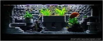 Aquarium Backgrounds 9 Diy Aquarium Backgrounds You Can Start Today Learn How