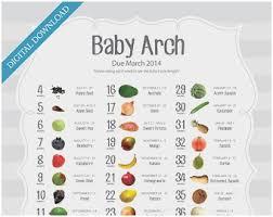 Pregnancy Fruit Size Chart Studious Pregnancy Baby Size Chart Fruit Baby Size Pregnancy