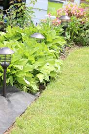 flower bed lighting. Nicely Edged Flower Bed With Hostas, Garden Fabric, And Solar Lighting I