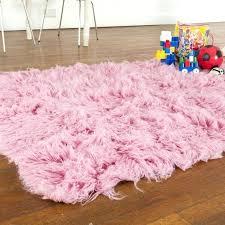 fuschia area rug