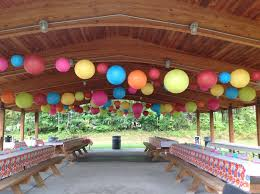 Decor for a Picnic Birthday Party!