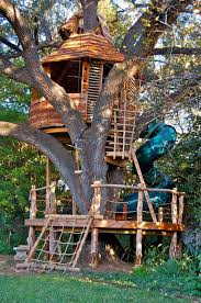treehouse masters. A Treehouse With Climbing Wall, Spiral Slide And Swings Wraps Around Large Live Oak Masters E