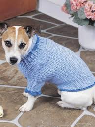 Dog Sweater Crochet Pattern Unique Dog Sweater Crochet Pattern Crochet And Knit