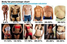Body Fat Calculator For Women Chart Body Fat Percentage Calculator