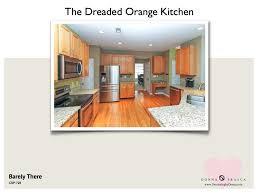 What Is The Kitchen Cabinet What Is The Best Kitchen Cabinet Color To Use When Your Kitchen Is