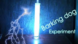 barking dog chemical experiment cool chemical reaction