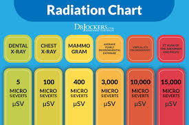 Mammograms And Your Risk Of Cancer Drjockers Com