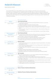 Business Analyst Resume Samples Templates Visualcv
