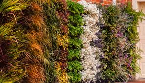how to build a vertical garden. how to build a vertical garden