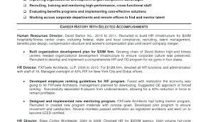 10 Curriculum Vitae Guideline 1mundoreal