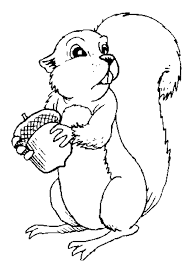 Cute Squirrel Coloring Pages Coloring Home