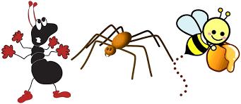 Image result for hikmah 3 hewan dalam quran