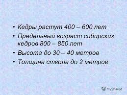 Презентация на тему МОУ Новоаганская общеобразовательная  6 Кедры растут 400 600 лет Предельный возраст сибирских кедров 800 850 лет Высота до 30 40 метров Толщина ствола до 2 метров