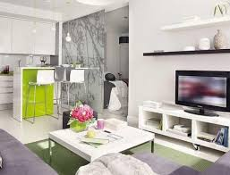 cool apartment furniture. large size of cool apartment furniture stunningdeas studio with design hd gallery frightening 41
