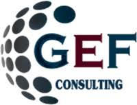 نتيجة بحث الصور عن GEF consulting