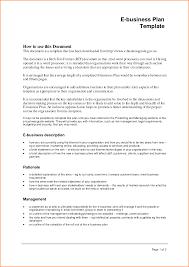 executive business plan template new executive business plan template templates design