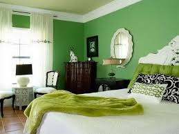 Bedroom Paint Ideas Green - Interior Design