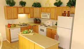 Small Kitchen Furniture Modern Small Kitchen Remodeling Ideas Chatodining