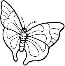Farfalle Disegni Per Bambini Da Colorare