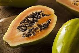 Resultado de imagen para papaya peligro