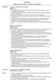 Assistant Principal Resume Sample Sample Principal Resume Resume Online Builder 89