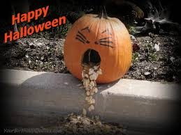 Halloween Quotes Rodney Dangerfield. QuotesGram