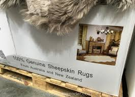 introducing sheepskin rug costco extraordinary exciting quad genuine area rugs