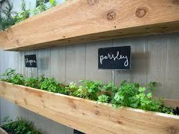 indoor herb garden design ideas