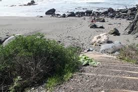 Shell Beach Jenner Ca California Beaches