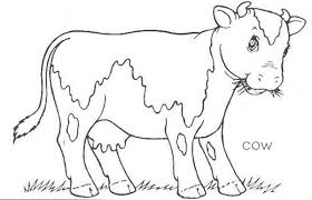 Small Picture Cow Coloring Pages For Preschool free coloring pages of preschool
