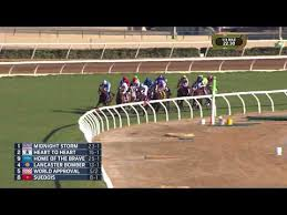 2017 Breeders Cup Charts 2017 Breeders Cup Mile World Approval Youtube