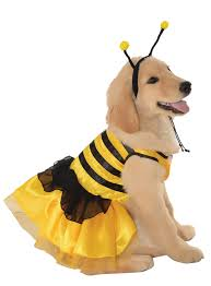 halloween costumes ble bee hallowen costum udaf