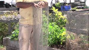 vegetables garden fence ideas for protection. How To Keep Raccoons Out Of Vegetable Gardens : Gardening 101 - YouTube Vegetables Garden Fence Ideas For Protection