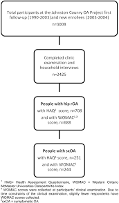 Pathophysiology Of Osteoarthritis In Flow Chart The Association Of Disability And Pain With Individual And