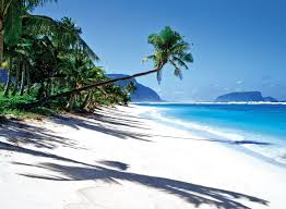 Location, size, and extent topography climate flora and fauna environment samoa consists of the islands of savai'i and upolu and several smaller islands. Samoa Pacific Islands Destinations Plan Air New Zealand