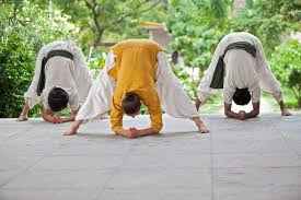 isha hatha yoga teacher sector 8b yoga cles in chandigarh justdial