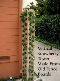 strawberry tower made from fence boards lettuces arugula spinach herbs of all kinds and uses way less dirt than a traditional pallet garden