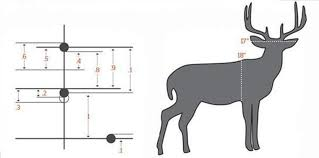 Mil Dot Reticles Use Mils To Estimate Range Outdoor Life