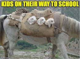 safe page kids on their way to image ged in goat memes