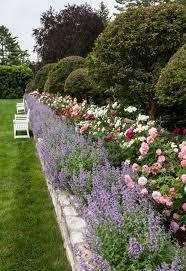 Best 25+ Rose garden design ideas on Pinterest   When to plant ...