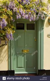 green front doorGreen front door and wisteria Stock Photo Royalty Free Image