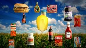 essay on food inc movie review essay help on film review