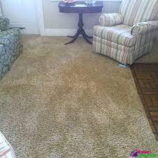 sears carpet cleaning review