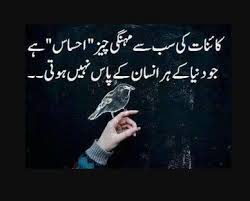 Urdu Poetry Urdu Quotes Urdu Quotes About Life Urdu Quotes Mesmerizing Urdu Quotes About Death