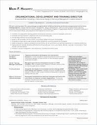 Investment Banking Resume Template Inspirational 11 Awesome S ...